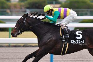 112205 300x200 - 2011年天皇賞(春)を制したヒルノダムールが登録抹消 種牡馬に