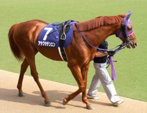 120502 300x231 - アサクサデンエン(牡13)が種牡馬引退