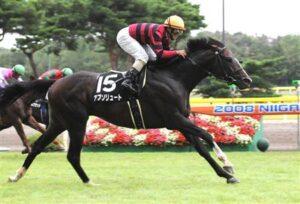 120803 300x204 - アブソリュート(セン8)が引退、乗馬に…09年の東京新聞杯・富士S勝ち馬