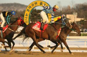 121204 300x199 - 韓国最強馬決定戦・グランプリ 藤井勘一郎騎手が外国人騎手初の韓国G1制覇!