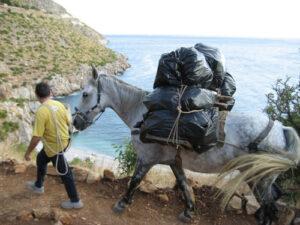 1213061 300x225 - 牝馬の2キロのハンデって適切か?