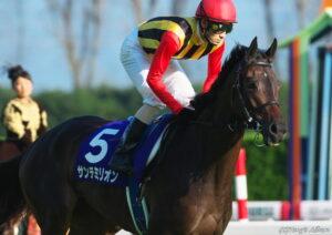 012501 300x212 - サンテミリオン(牝6)が引退、繁殖入り…2010年オークスをアパパネと同着優勝