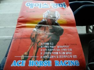 012506 300x225 - 日本の競走馬招待、韓国で9月に初の国際交流レース開催へ 11月には韓国馬が日本に遠征