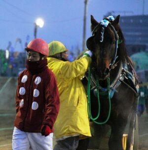 26e99482caa9e22c977f2cc33a67094b 300x304 - 【帯広記念】この馬、本当に強い!馬じゃないよ…絶対王者カネサブラック、スーパーペガサスに並ぶ重賞20勝目
