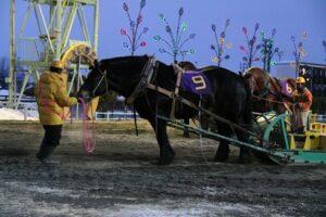 2f560f668d39355ac8aa442fb1341583 300x200 - 【帯広記念】この馬、本当に強い!馬じゃないよ…絶対王者カネサブラック、スーパーペガサスに並ぶ重賞20勝目