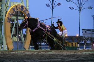 3b8aabb3cb65a1887a365288e9100f2e 300x200 - 【帯広記念】この馬、本当に強い!馬じゃないよ…絶対王者カネサブラック、スーパーペガサスに並ぶ重賞20勝目