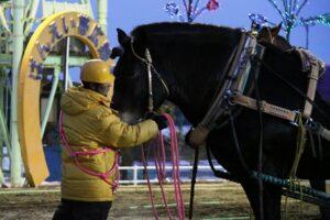 478502a47542c0189a73f56c75d82315 300x200 - 【帯広記念】この馬、本当に強い!馬じゃないよ…絶対王者カネサブラック、スーパーペガサスに並ぶ重賞20勝目