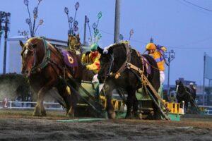 6f6dd7a765206992302e5f217b431a3c 300x200 - 【帯広記念】この馬、本当に強い!馬じゃないよ…絶対王者カネサブラック、スーパーペガサスに並ぶ重賞20勝目