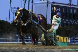 913ad3c7c1c97d89a47e8b868ff163ff 300x200 - 【帯広記念】この馬、本当に強い!馬じゃないよ…絶対王者カネサブラック、スーパーペガサスに並ぶ重賞20勝目
