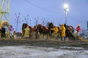 dee646f495a315af7e99409c26a2de81 300x200 - 【帯広記念】この馬、本当に強い!馬じゃないよ…絶対王者カネサブラック、スーパーペガサスに並ぶ重賞20勝目