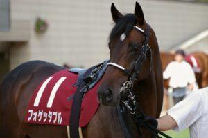 060502 300x200 - 09年ステイヤーズS、10年ダイヤモンドSに優勝したフォゲッタブルが引退 ノーザンホースパークで乗馬に