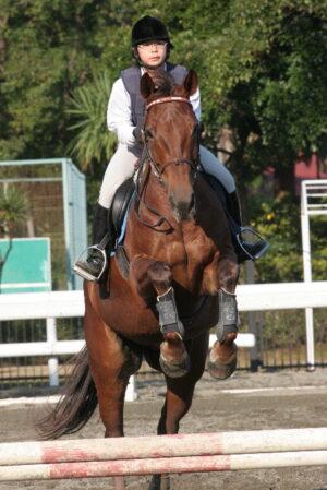 2c8795ce 300x449 - CBC賞の誘導馬に名古屋の新人女性騎手・木之前葵(19)が騎乗 ハート柄の勝負服がトレードマーク、今年デビューで既に6勝