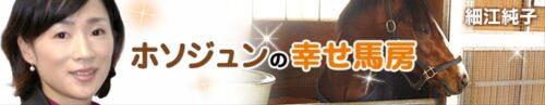 """7a14d422 500x97 - 自称""""蒲郡のチャン・ツィイー"""" 細江純子元騎手(38)が妊娠、産休入り 9月中旬に出産予定「授かった命と周囲の皆さんに感謝」"""