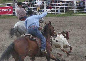 0706011 300x213 - 競馬って動物虐待だろ