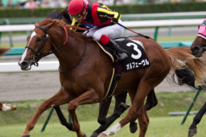 073002 300x200 - 日本競馬史上最強馬って