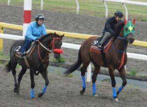 0d9ec319 300x219 - 巨漢馬ショーグン、JRA史上2位の馬体重604キロで勝利