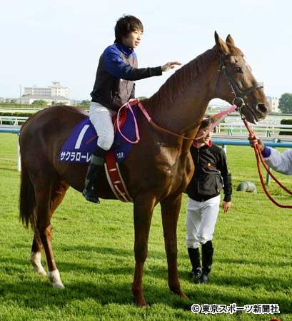 562576e3 - 1996年度代表馬サクラローレル、函館に来場 横山和を背にパドック周回 谷岡氏「22歳ですが、まだまだ元気で頑張っています」