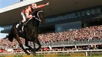 bc8886af - G1・7勝馬ウオッカの初子(牡2)、馬体はさらに成長して593キロ!年内または来年1月のデビューを目指す