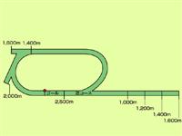 eb28851a - 1600まででいいから直線だけの競馬場作ろうや
