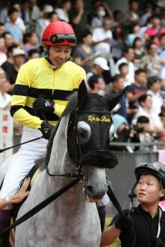 keiba 1432210705 4503 - 障害のゴールドシップことアップトゥデイトの宝塚記念出走を願うスレ