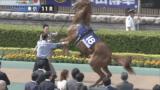 keiba 1525587055 1402 160x90 - 【競馬】ほら、強いけど頭おかしい馬のこともう忘れてる