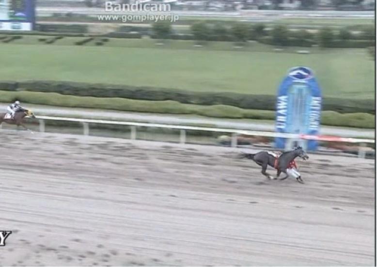 keiba 1531802918 601 - 的場騎手、1着ゴールまであと30センチのところで落馬!