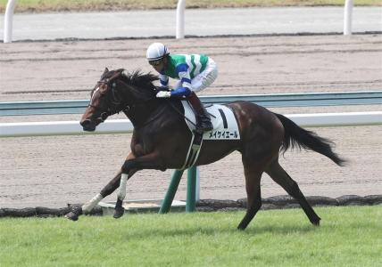 【小倉5R・新馬】ミッキーアイル産駒メイケイエールが好位からV