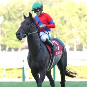 【札幌記念】3歳馬ブラックホールはプラス20キロで9着 石川「苦しい競馬でした」