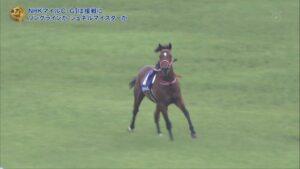livejupiter 1620802213 4501 300x169 - 【競馬】NHKマイルで余裕の走りをみせつけたバスラットレオン、ダービーへ