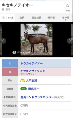 livejupiter 1627482516 3601 300x485 - 【競馬】馬術でもいけそうな競走馬
