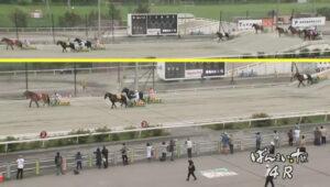 keiba 1629098406 801 300x170 - 【ばんえい競馬】人気馬がゴール直前で転がって寝る