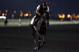 livejupiter 1627993875 16101 300x200 - 【画像】スヤスヤサリオスよりかわいい馬の画像はない説