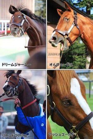 livejupiter 1627993875 18201 300x448 - 【画像】スヤスヤサリオスよりかわいい馬の画像はない説