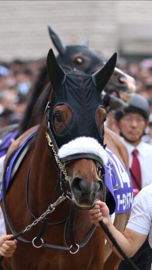 livejupiter 1627993875 20401 300x533 - 【画像】スヤスヤサリオスよりかわいい馬の画像はない説