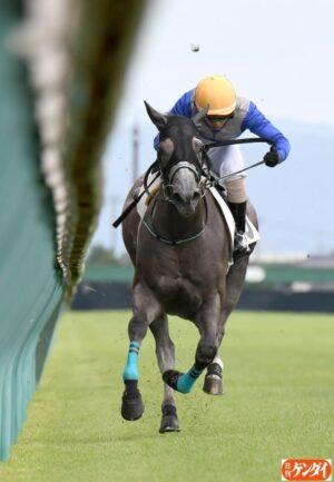 livejupiter 1627993875 23001 300x433 - 【画像】スヤスヤサリオスよりかわいい馬の画像はない説