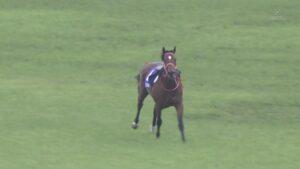 livejupiter 1627993875 2801 300x169 - 【画像】スヤスヤサリオスよりかわいい馬の画像はない説