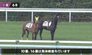 livejupiter 1627993875 4201 300x181 - 【画像】スヤスヤサリオスよりかわいい馬の画像はない説