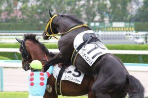 livejupiter 1627993875 6101 300x200 - 【画像】スヤスヤサリオスよりかわいい馬の画像はない説