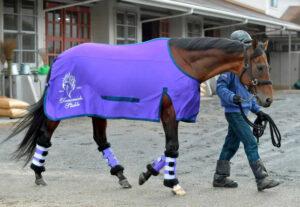 livejupiter 1627993875 7501 300x207 - 【画像】スヤスヤサリオスよりかわいい馬の画像はない説