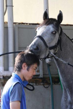 livejupiter 1627993875 9301 300x448 - 【画像】スヤスヤサリオスよりかわいい馬の画像はない説