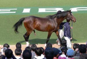 livejupiter 1629815741 11702 300x203 - 【画像】テーオーコンドルとローマンネイチャーより面白い馬の画像ってあるの?