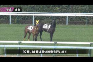 livejupiter 1629815741 12101 300x200 - 【画像】テーオーコンドルとローマンネイチャーより面白い馬の画像ってあるの?