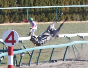 livejupiter 1629815741 1401 300x234 - 【画像】テーオーコンドルとローマンネイチャーより面白い馬の画像ってあるの?