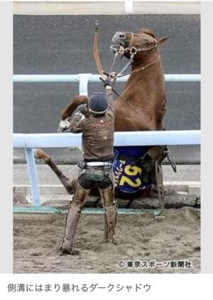 livejupiter 1629815741 2701 300x422 - 【画像】テーオーコンドルとローマンネイチャーより面白い馬の画像ってあるの?