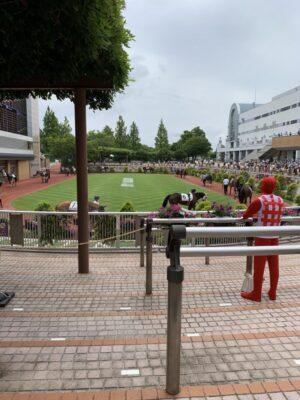 livejupiter 1629815741 3501 300x400 - 【画像】テーオーコンドルとローマンネイチャーより面白い馬の画像ってあるの?
