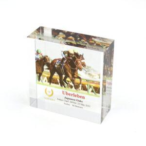 livejupiter 1629815741 5901 300x300 - 【画像】テーオーコンドルとローマンネイチャーより面白い馬の画像ってあるの?