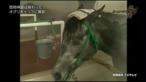 livejupiter 1629815741 6001 300x169 - 【画像】テーオーコンドルとローマンネイチャーより面白い馬の画像ってあるの?