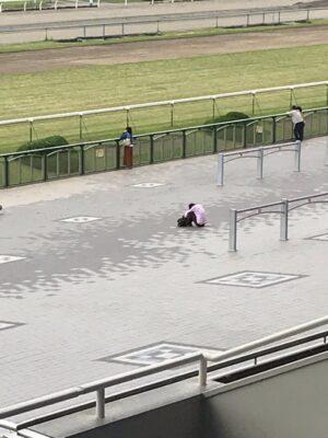 livejupiter 1629815741 6301 300x400 - 【画像】テーオーコンドルとローマンネイチャーより面白い馬の画像ってあるの?