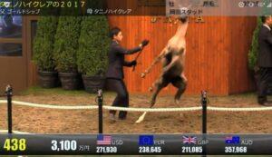livejupiter 1629815741 6401 300x173 - 【画像】テーオーコンドルとローマンネイチャーより面白い馬の画像ってあるの?