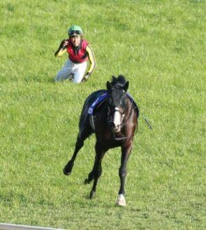 livejupiter 1629815741 6501 300x334 - 【画像】テーオーコンドルとローマンネイチャーより面白い馬の画像ってあるの?